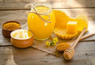 Negocios rentables miel y abejas