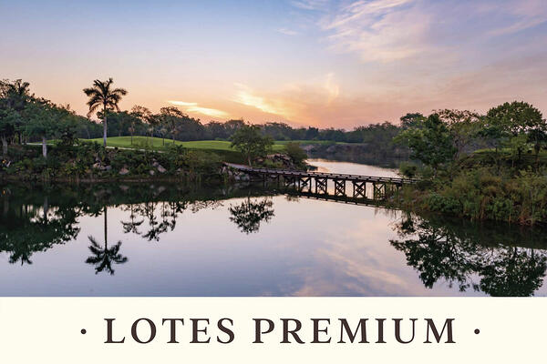 YCC Nuevas etapas - Lotes Premium web