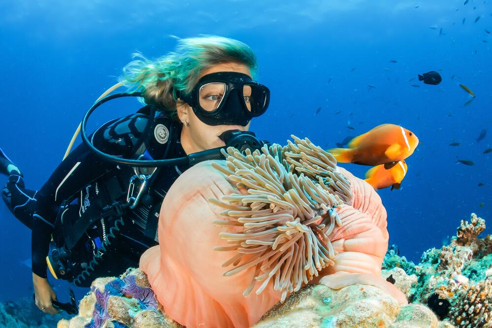 buceo arrecife maya